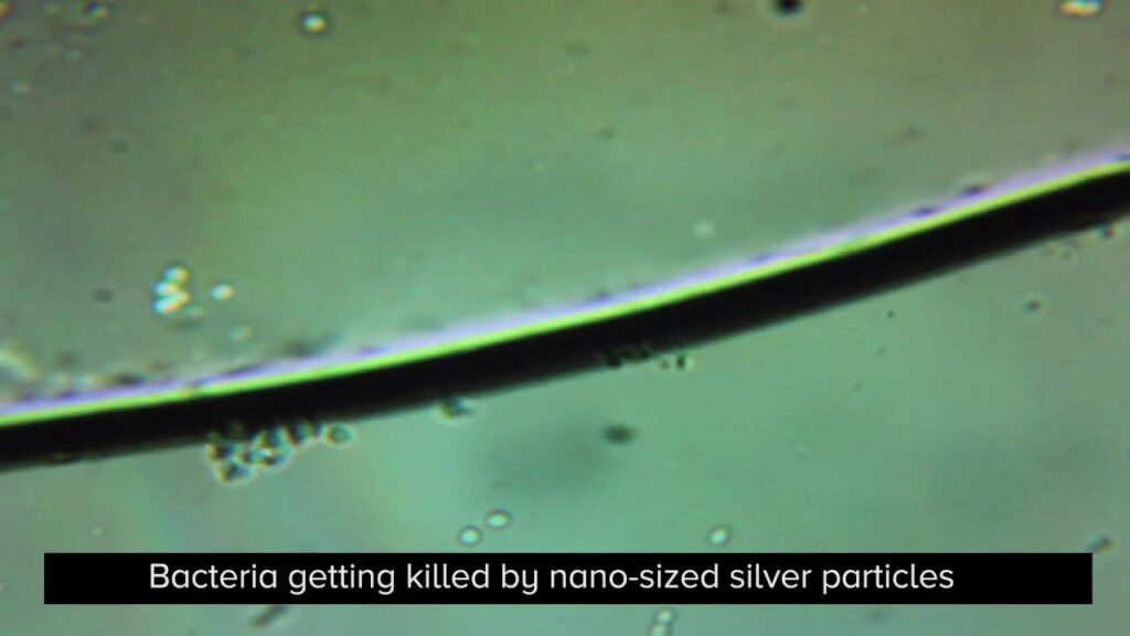 Colloidal Silver Killing Bacteria — For Ear Infection, Pinkeye & Food Poisoning