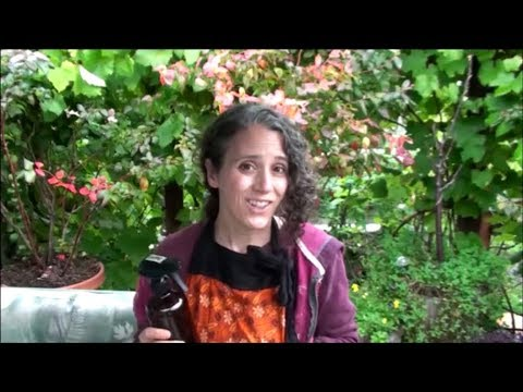 Colloidal Silver and Copper and How I Use Them